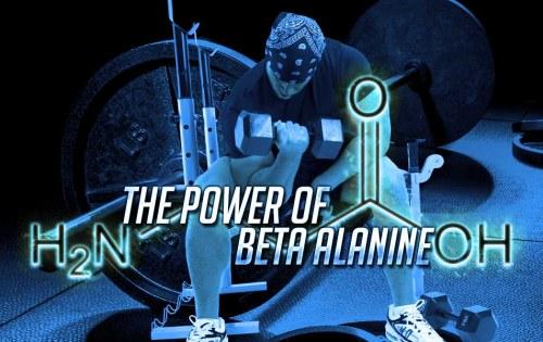 The Power of Beta Alanine